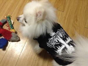 black metal 005