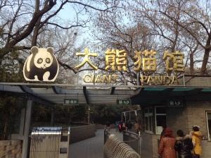 Panda Entrance